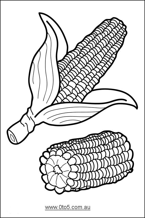 corn template Vegetable Template