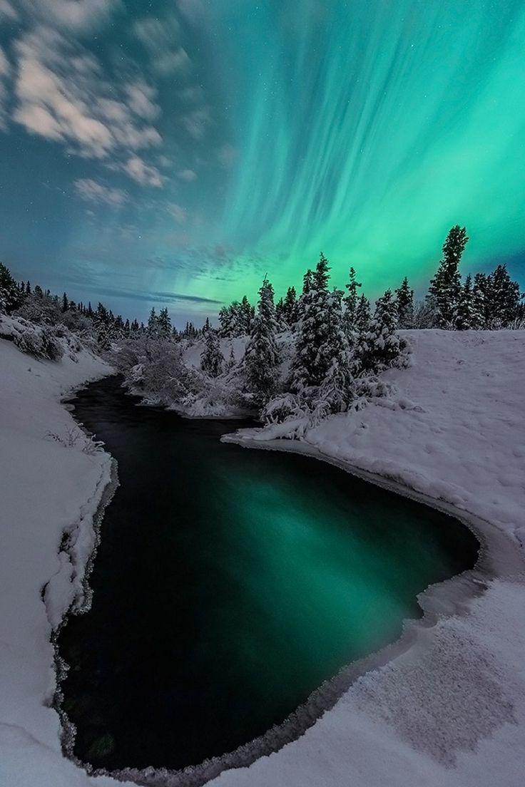 Auroras in Whitehorse Yukon, Canada
