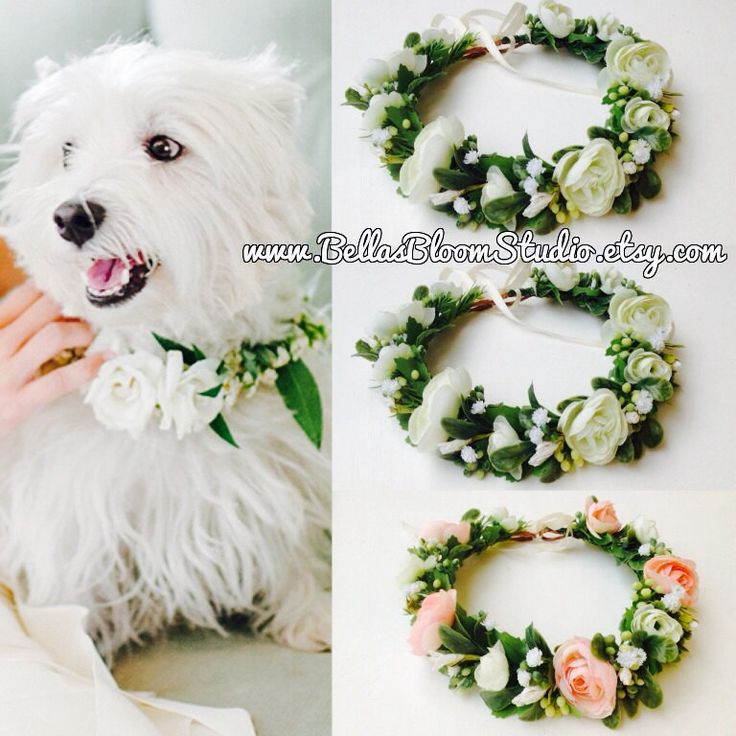 dog flower collar wedding dog collar girl dog collar dog wedding
