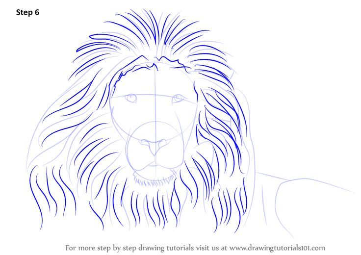 how to draw a lion tattoo step by step