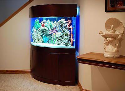 Corner Aquariums