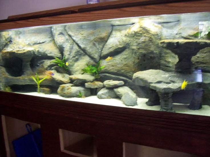 Zoom in real dimensions 1024 x 768 aquarium for Diy fish tank decor
