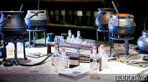Image result for harry potter potions
