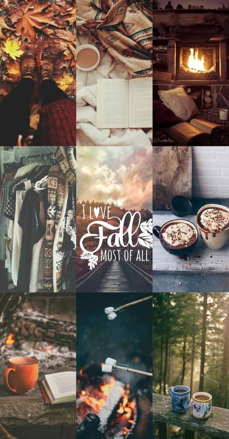 Herbstfotografie Collage Mood Board  #board #collage #herbstfotografie