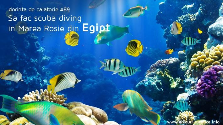 Egipt  Locuri pe care imi doresc sa le vad (partea 9).  Vezi mai multe poze pe www.ghiduri-turistice.info