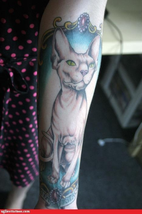 1000 images about sphynx tattoos on pinterest for Hairless cats with tattoos