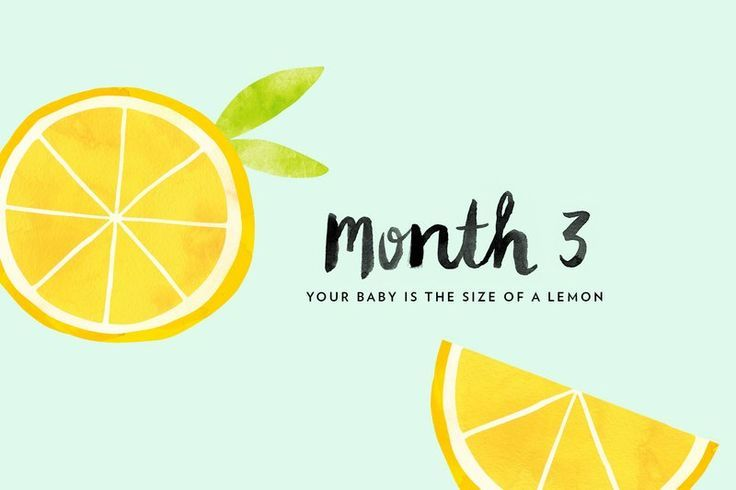 Third Month of Pregnancy: Welcome to your third month of pregnancy, and the last month of your first trimester! While some early pregnancy inconveniences (including morning sickness and food aversions) tend to peak this month, the exciting changes and dev