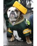 Go Packers!