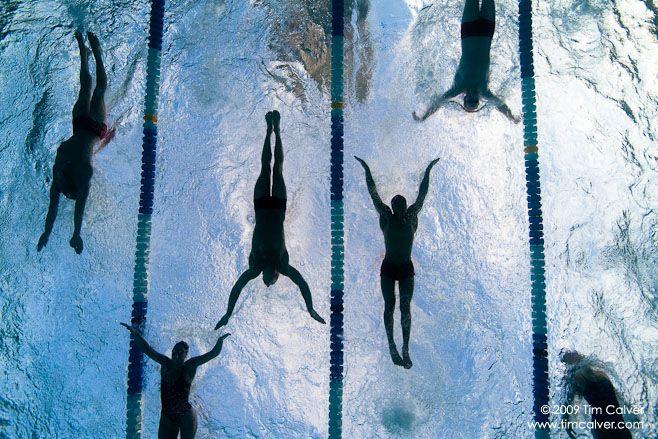 Swimmy swim swimmmm: Journals, Swim Swimmmm, Swimmi Swim, Underwater Swimmers, Swim Team, Underwater Butterflies, Igla Swim