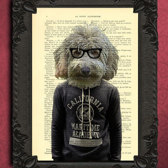 labradoodle art goldendoodle print on dictionary page