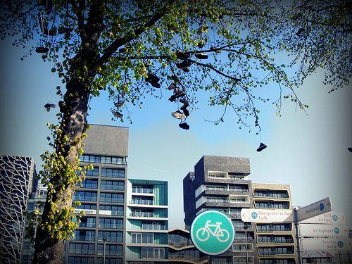Schoenenboom Lelystad by vandijktina, via Flickr