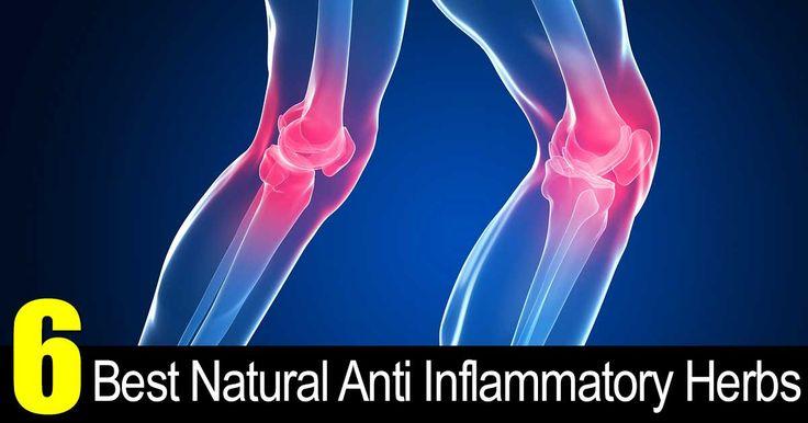Best Natural Anti Inflammatory For Tendonitis