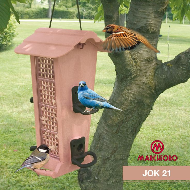 #JOK 21  Mangiatoia/rifugio per uccelli in libertà  #marchioro #lineapet #welovepet