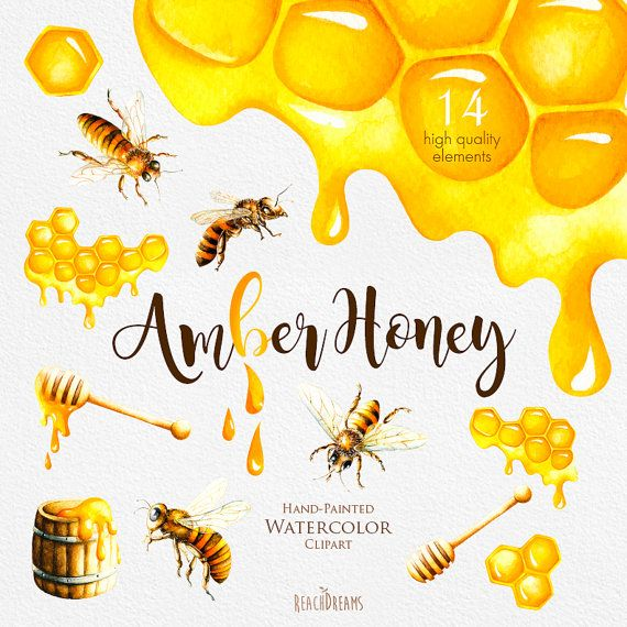 This set of 14 high quality Watercolor Honey Bee Clipart Perfect graphic for scrapbooking, invitations, greeting cards, photos, posters, quotes and more. Item details: 14 PNG files. (300 dpi, RGB, transparent background) size (larger side) aprox.: 16 - 4 inch, 4800 - 1200px 300dpi ---------------------------------------------------------------- Instant Download: Once payment is cleared, you can download your files directly from your Etsy account. ----------------------------------------...