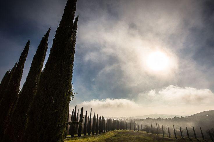 6. Amelia  Amelia is één van de oudste Italische nederzettingen van het schiereiland, honderden jaren ouder dan Rome. De oudste delen van intacte stadsmuren dateren uit de 5e eeuw voor Christus. Men houdt er eeuwenoude tradities in ere en de vaandeldragers van Amelia zijn regelmatig in het buitenland te bewonderen.