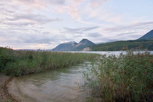 Photo des roselières du lac d'Annecy à Saint Jorioz