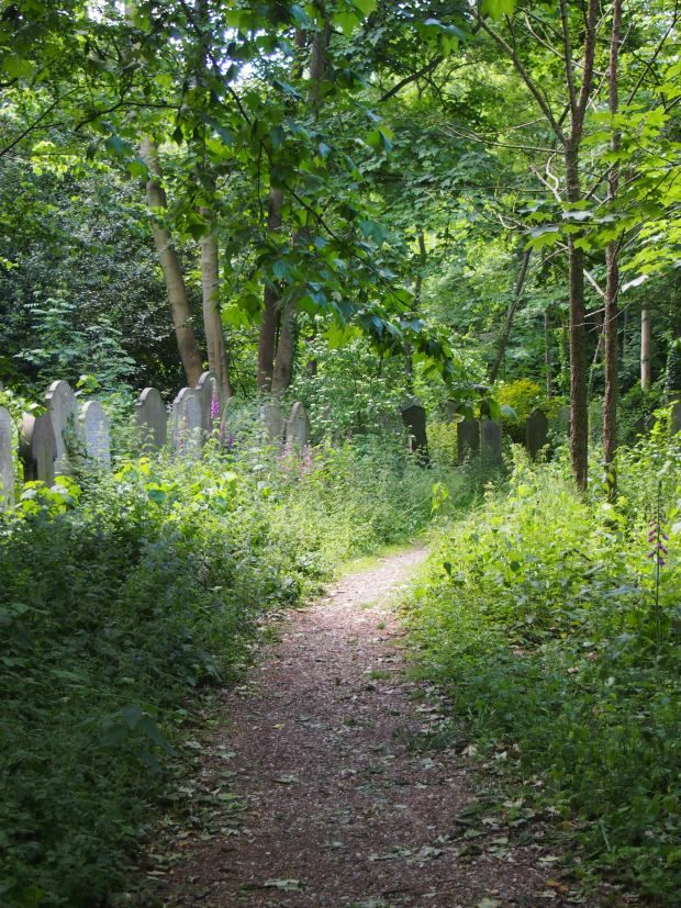 TOWER HAMLETS: A NEGLECTED CEMETERY REBORN AS A NATURE RESERVE