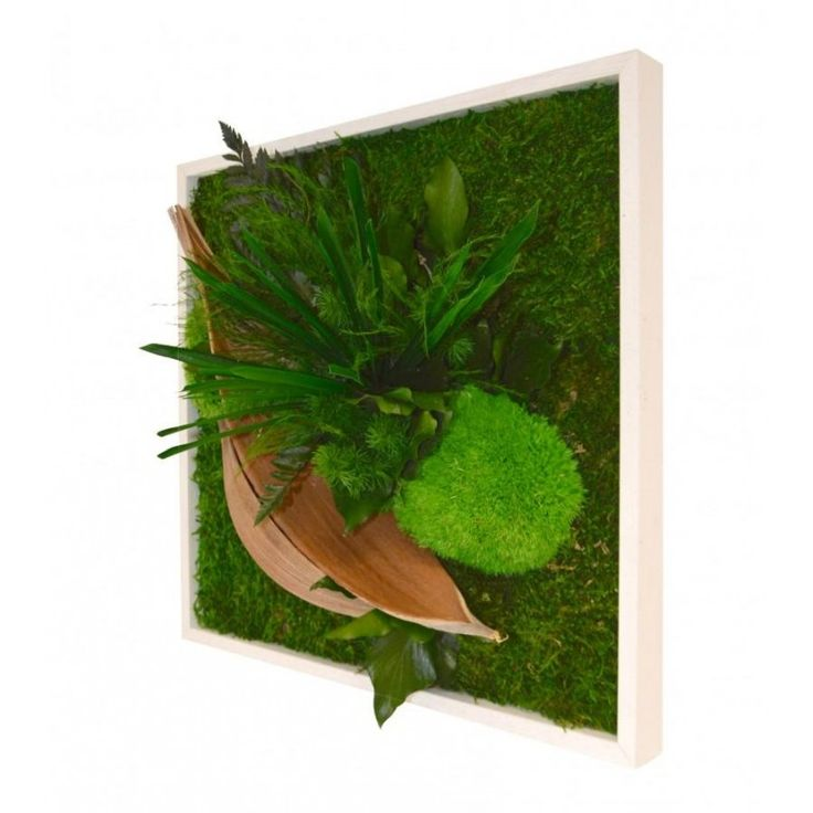 Envie de quelque chose de raffiné et unique ? Venez découvrir nos tableaux végétaux ! Chaque tableau est réalisé à la demande, ce qui rend chaque pièce unique. Pour décorer votre salon, chambre, cuisine ou salle de bain !  #AmbianceGreen #BodyLaPlante #Tableau #Plantes #TableauxVégétaux #JardinDIntérieur #chambre #cuisine #salledebain #salon #unique #rafiner #eclatdeverre #exclusivitéweb A découvrir en cliquant sur le lien suivant => https://shop.eclatdeverre.com/fr/14773-ambiance-green