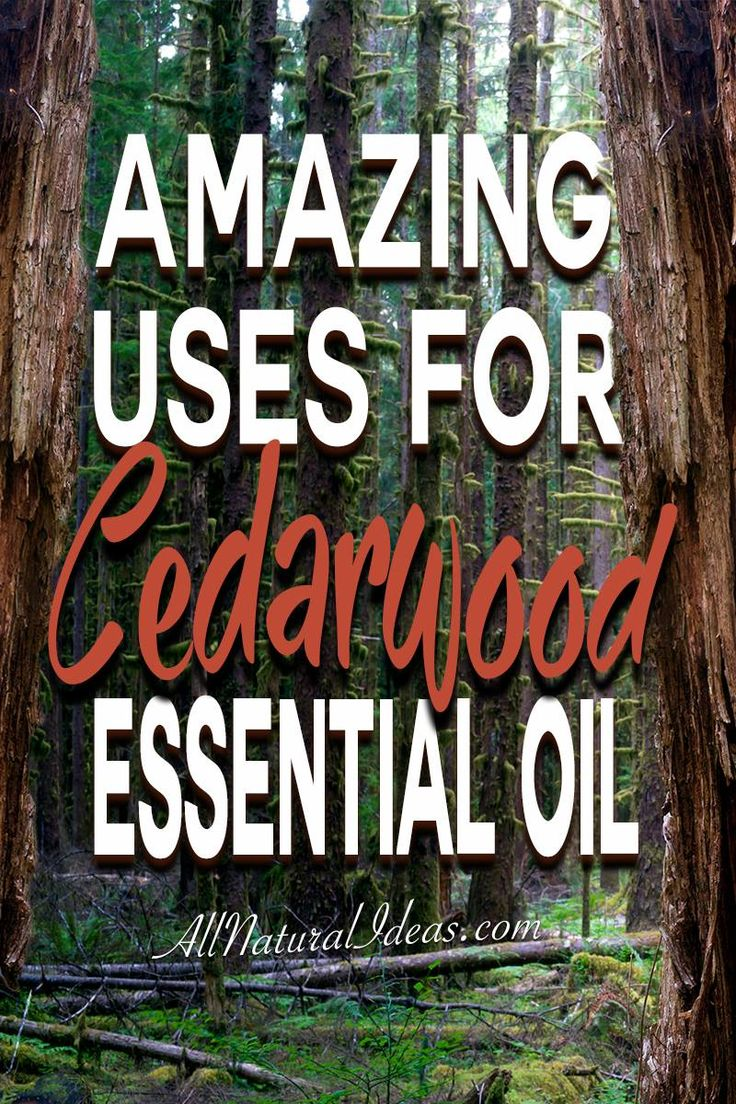 There are so many amazing cedarwood essential oil uses. If you have room in your oil collection, here are some top uses for cedarwood essential oil.