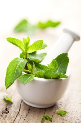 Uleiul de mentă este un leac parfumat pentru o sumedenie de boli şi simptome, de la afecţiuni respiratorii şi dureri de cap, până la febră, indigestie sau spasme intestinale. Uleiul de mentă conţine mentol şi …