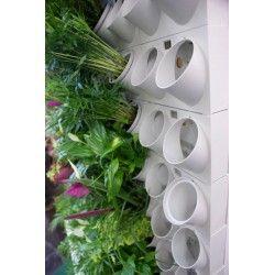 Garden Spot, Pixel Garden, Vertical Gardening, GreenWall