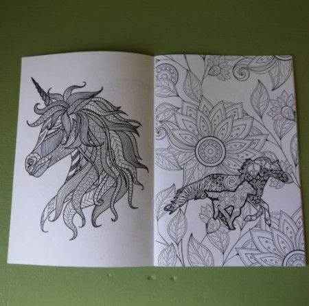Colouring Book - Horse themed - adult detailed - Pony Express Girls Canada - 2