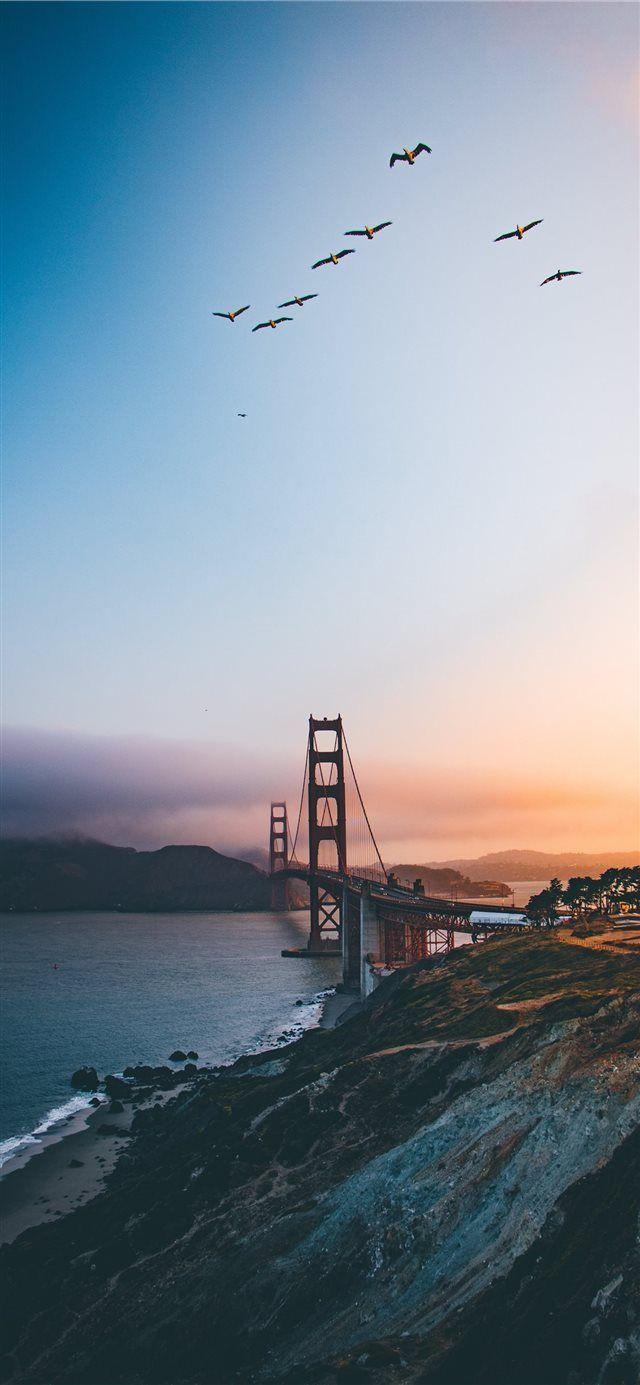 Golden Gate Bridge United States Iphone X Wallpaper La Bridge Sky Bird Goldengatebridge Flock Structure Iphone Wallpaper Travel City Wallpaper Scenery