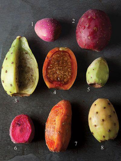 Variedades de Tunas 1. juana  2. roja pelona 3. cristalina 4. naranjona  5. xoconostle  6. cardona  7. cuerno de venado  8. platanera.