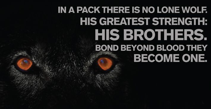 Wolf Quotes About Strength by @quotesgram