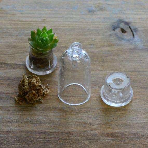 25 Best Ideas About Terrarium Supplies On Pinterest