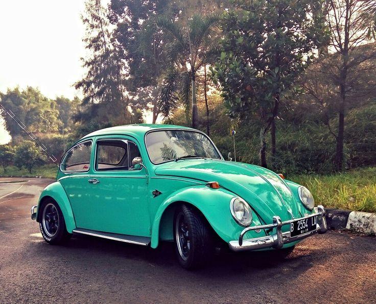 Green bugz