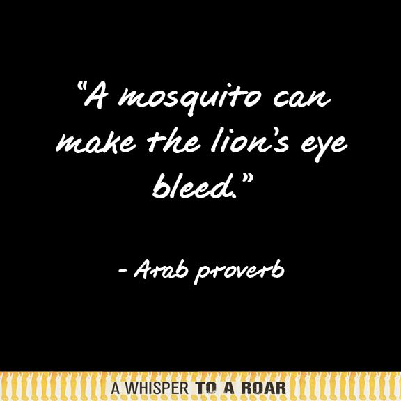 """A mosquito can make the lion's eye bleed."" - Arab proverb #theywillbeheard"