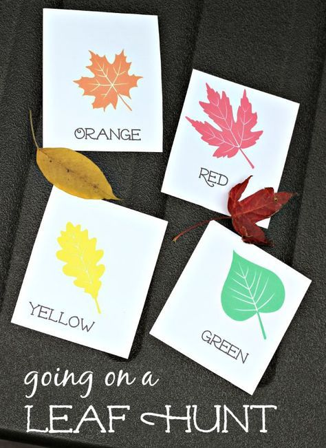 fall leaf hunt for kids  with free printable leaf cards