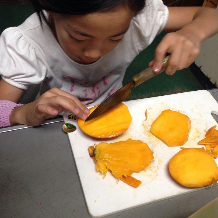 マンゴー毎日食べてる マンゴー農園の娘