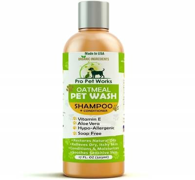 Oatmeal - Best dog shampoo for dry and itchy skin!