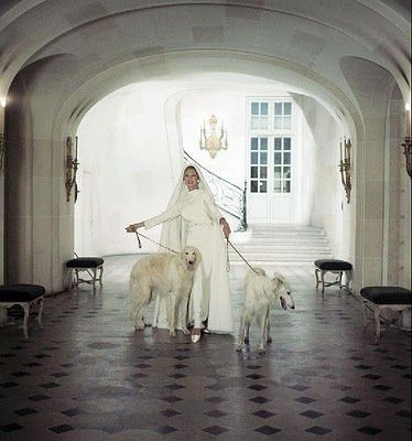 Baroness von Thyssen and her two beautiful Borzois at Roger Vivier's apartment - photo by Cecil Beaton