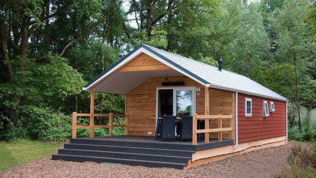 Heidelodges - De Wiltzangh - net naast Nationaal Park Dwingelderveld met zicht op het park. Gezien: Eik en Douglas