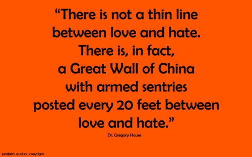 the thin line between love and Intense love can seem so lasting and forever that it's almost surrealistic when we  realize how quickly it can turn into hate.