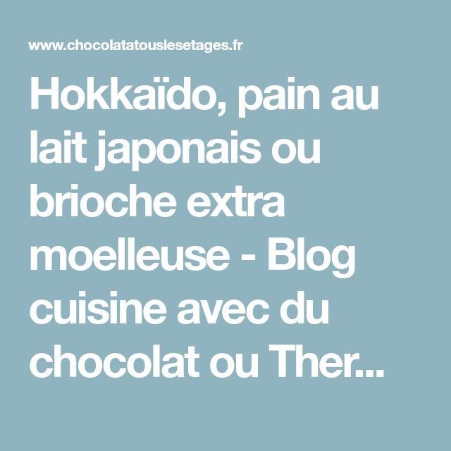 Hokkaïdo, pain au lait japonais ou brioche extra moelleuse - Blog cuisine avec du chocolat ou Thermomix mais pas que