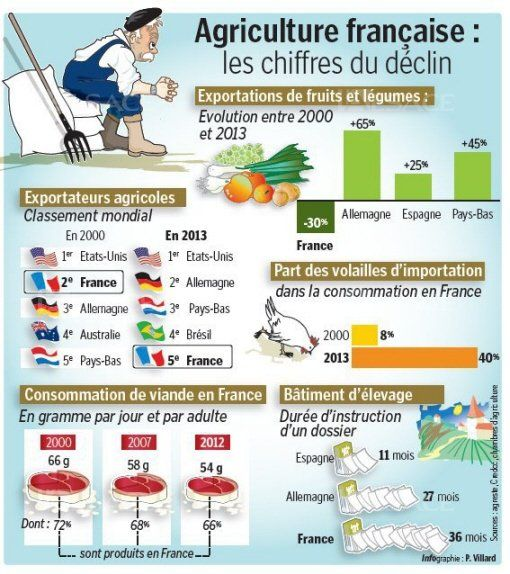 Agriculture. Infographie
