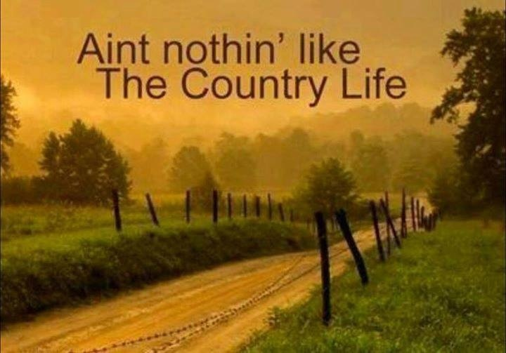 Country Girl Quotes About Life: 1000+ Country Life Quotes On Pinterest