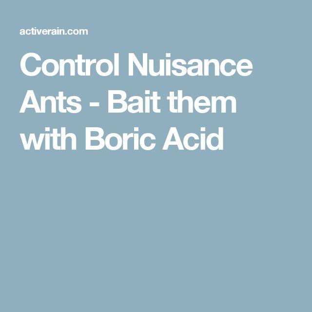 Control Nuisance Ants - Bait them with Boric Acid