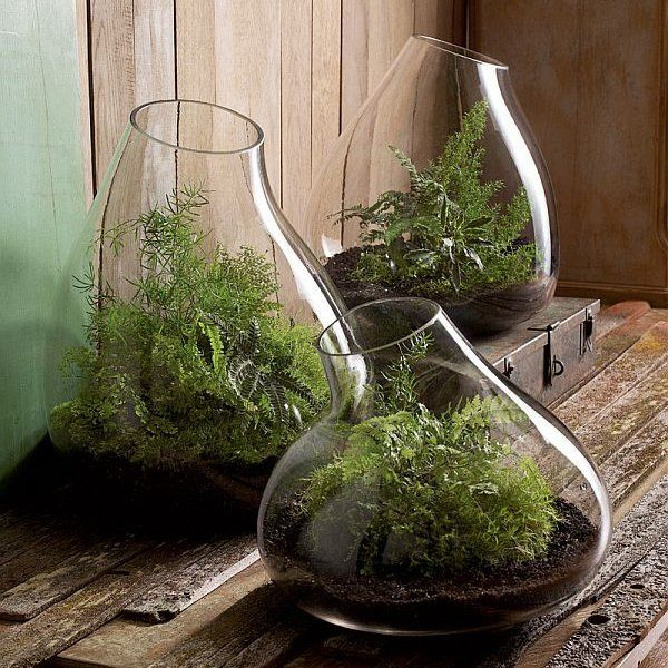 Roost Recycled Glass Bubble Terrarium