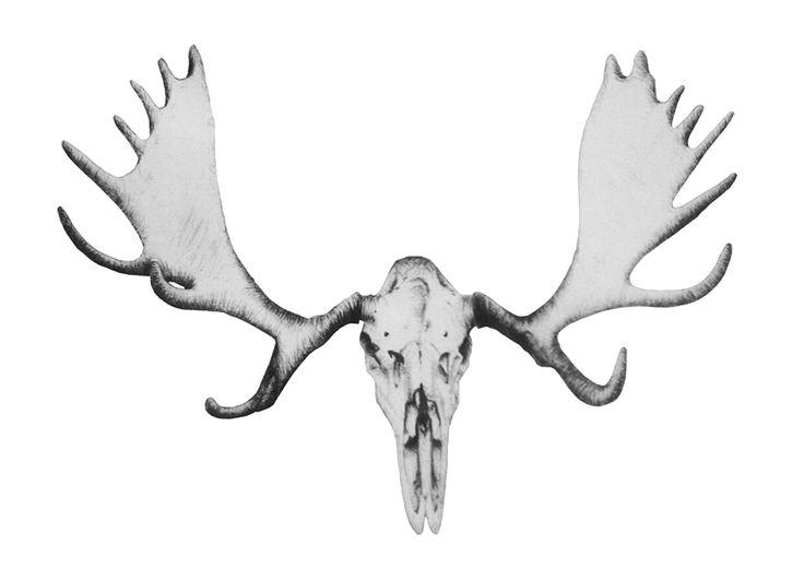 moose skull tattoo the image kid has it. Black Bedroom Furniture Sets. Home Design Ideas