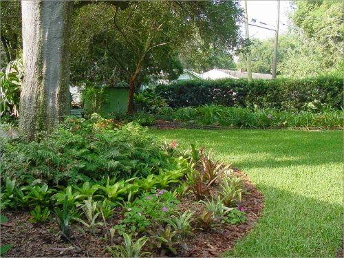 Florida-Friendly Landscaping design idea. - 31 Best Florida-Friendly Landscaping Images On Pinterest Florida
