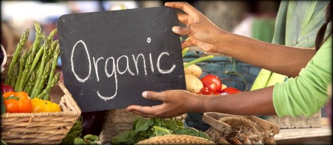 What Is Organic and Why Should I Care. REAL PRODUCTS, REAL PASSION, REAL POSSIBILITIES. http://mtex.it/pt9s58f3