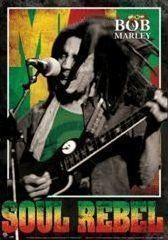 BOB MARLEY - (SOUL REBEL) Poster 3D