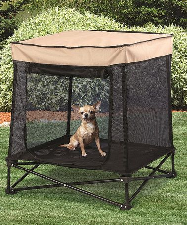 Love this Portable Shade Pet Kennel by Etna Products on #zulily! #zulilyfinds