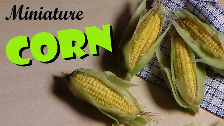 Miniature Corn On The Cob - Polymer Clay Tutorial