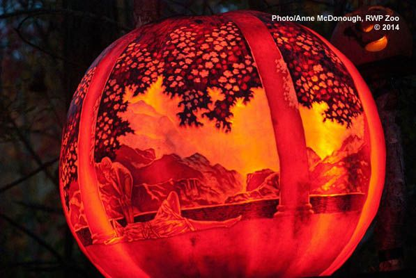 Jack-O-Lantern Spectacular | Roger Williams Park Zoo - Providence, RI.  Open nightly? in October